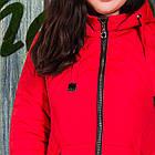Весенняя женская куртка больших размеров - модель 2019 - (кт-423), фото 2