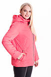 Ультрамодная укороченная женская куртка на весну-осень, фото 4