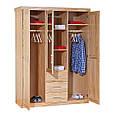 Шкаф из массива дерева 013, фото 2