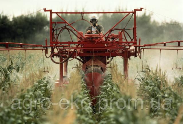 Пестициды. Какие выбрать?