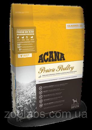 Корм Acana для собак и щенков | Acana Prairie Poultrry 11,4 кг, фото 2