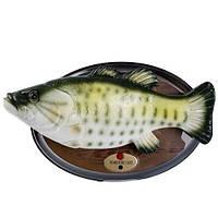 Поющая и танцующая рыба Прикольный подарок