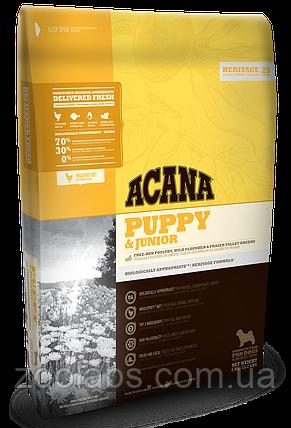 Корм Acana для щенков и юниоров   Acana Puppy & Junior 11,4 кг, фото 2