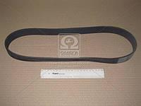 ⭐⭐⭐⭐⭐ Ремень поликлиновый (производство  Contitech)  10PK1070