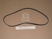 Ремень поликлиновый   5PK1155 (пр-во DONGIL)
