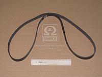 Ремень поликлиновый   6PK1555 (пр-во DONGIL)