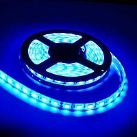 Влагостойкая светодиодная лента синий свет 3528 IP65 60 диод./м 4.8 вт/м