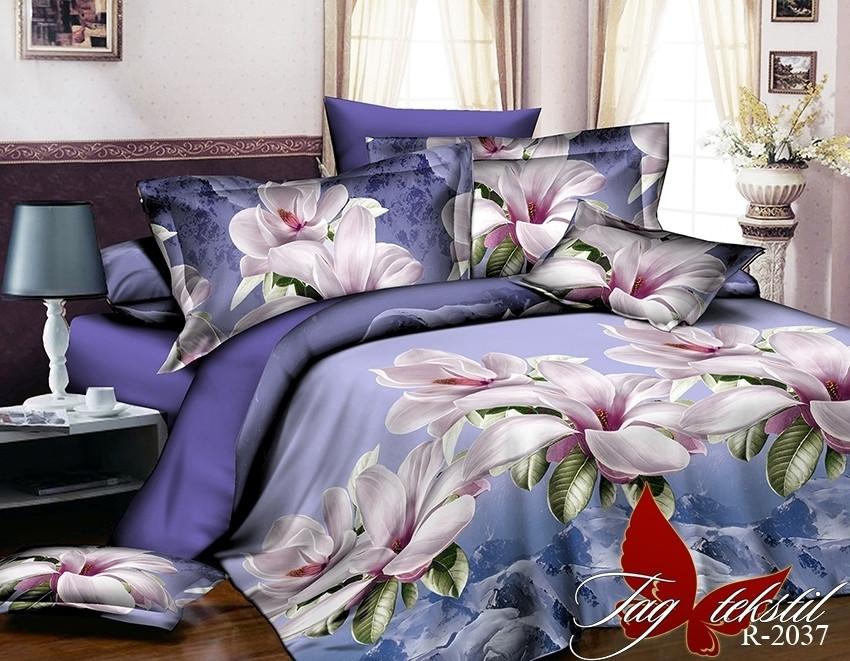 Комплект постельного белья из натурального ранфорса R2037