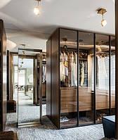 Шкаф с прозрачными стеклами тонированными