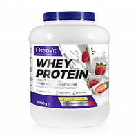 Whey Protein Ostrovit, фото 1