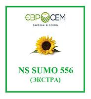 Семена подсолнечника NS SUMO 556 (экстра), А-Е (5), 2018 г.у., EВРОСЕМ