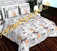 Набор постельного белья №с292 Евростандарт, фото 1