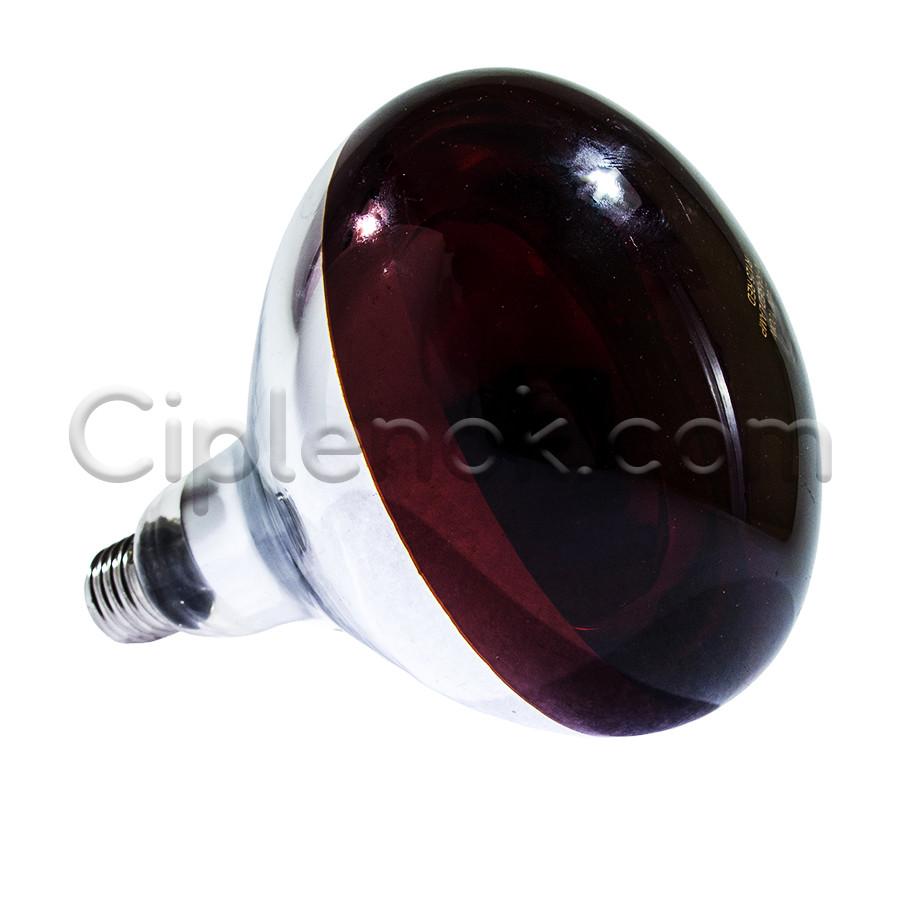 Лампа инфракрасная R125 250 Вт красн. BS