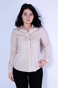 Рубашка женская бежевая 3128