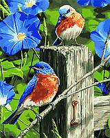 Картины по номерам на холсте Весенние гости KHO4090