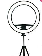 Кольцевая лампа BL, фото 1