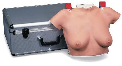 Тренажер обследования груди.