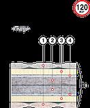 Двоспальний матрац Тигр (Велам) 160х190х20см беспружинныйSprut+кокос з/л до 120кг, фото 2