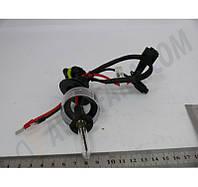 Ксеноновая лампа HID Н1 12v 4300К DC