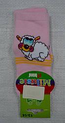 Детские носки махровые Овечка р.13-14 (Brand, Польша)