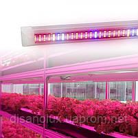Фито светильник  для растений T8 Led 60W   1200mm  230V, фото 7