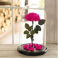 Стабилизированная роза в колбе Lerosh - Lux 33 см, раскрытая Ярко Розовая - 138970