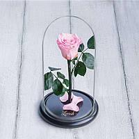 Стабилизированная роза в колбе Lerosh - Mini 27 см, Розовая - 138911