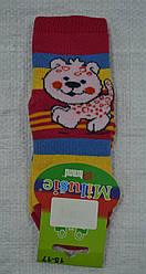 Детские носки махровые в полоску Тигренок р. 15-17 (Brand, Польша)