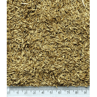 Грястица семена, 1кг