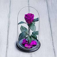 Стабилизированная роза в колбе Lerosh - Mini 27 см, Фиолетовая SKL15-138912