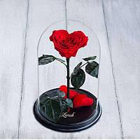 Стабилизированная роза в колбе Lerosh - Lux 33 см, Сердце Красная - 138951