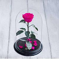 Стабилизированная роза в колбе Lerosh - Premium 33 см, Ярко Розовая - 138938