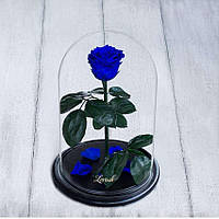 Стабилизированная роза в колбе Lerosh - Standart 33 см, Синяя - 138923