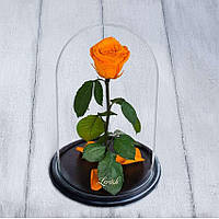 Стабилизированная роза в колбе Lerosh - Standart 33 см, Оранжевая SKL15-138921