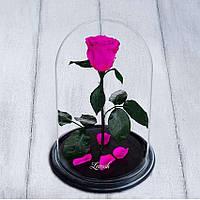 Стабилизированная роза в колбе Lerosh - Standart 33 см, Ярко Розовая SKL15-138926