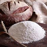 Мука пшеничная грубого помола 2 кг, фото 3