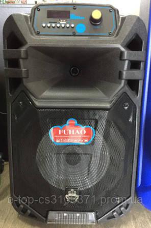Колонка аккумуляторная с микрофоном FH-B10 / 80W ,USB/FM/Bluetooth