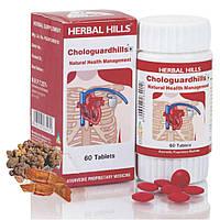 Ааюрведическая формула для  сердца 550 мг / Chologuardhills, Herbal Hills / 60 tab