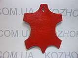 Краска для кожи Felice цв.Красный (25 мл)Для обуви,гладкой кожи, кожгалантереи, кожаной мебели, кожаного салон, фото 2