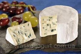 Сыр БАВАРИЯ БЛЮ на 10-12 литров молока - закваска+стартер плесени+фермент