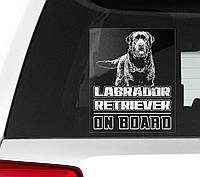 Автомобильная наклейка на стекло Лабрадор ретривер на борту