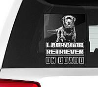 Автомобильная наклейка на стекло Лабрадор ретривер на борту (Labrador Retriever On Board)