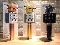 Bluetooth микрофон-караоке WS-858 с динамиком (колонкой), слотом USB и FM тюнером, фото 1