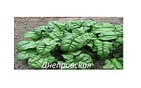 Семена шпината Матадор 100г