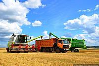 Український агроекспорт до ЄС поставив черговий рекорд – $6,3 млрд