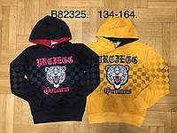 Толстовка для мальчиков оптом, Grace, 134-164 см,  № B82325, фото 1