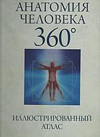 Анатомия человека 360°. Др. Джейми Роубак