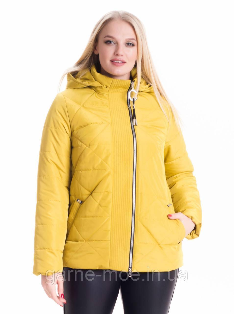 ЛД74 Женская модная куртка 46-66 рр разные цвета