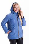 ЛД74 Женская модная куртка 46-66 рр разные цвета, фото 6