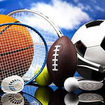 Каталог по видам спорта